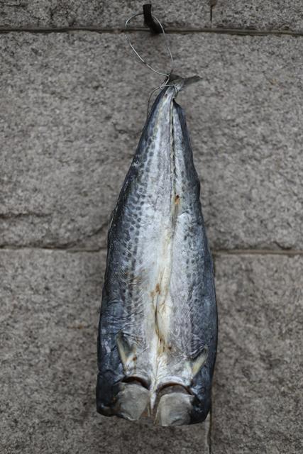 崂山鲅鱼片儿