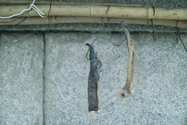 屋檐下的两块干鱼肉